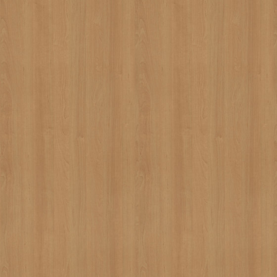 Vermont Alder de Pfleiderer | Planchas de madera