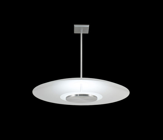 Florette Pendant by The American Glass Light Company | General lighting