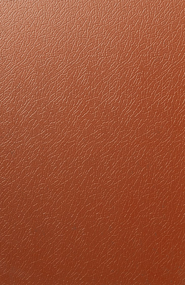 Solano® Nature | Terracotta brown by ArcelorMittal | Sheets