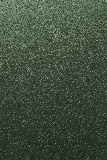 Solano® Nature | Juniper green by ArcelorMittal | Sheets