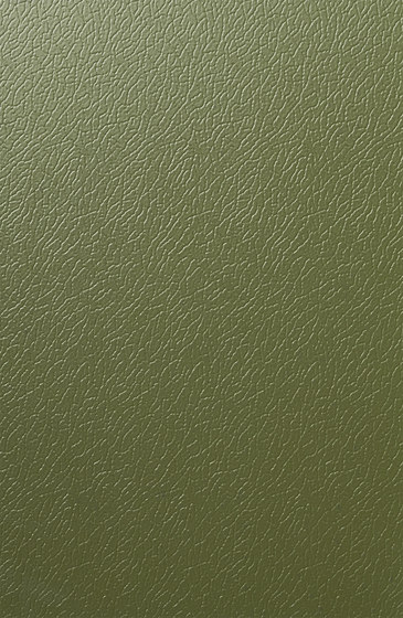 Solano® Nature | Olive green by ArcelorMittal | Sheets