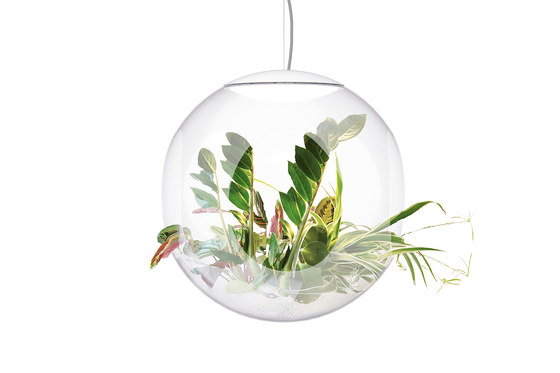 Babylone clear by Greenworks | Suspended lights
