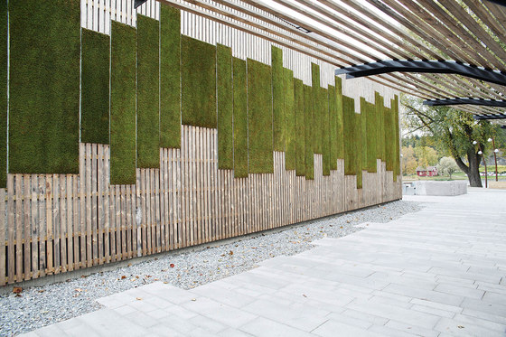 Outdoor Moss Wall by Greenworks | Green facades