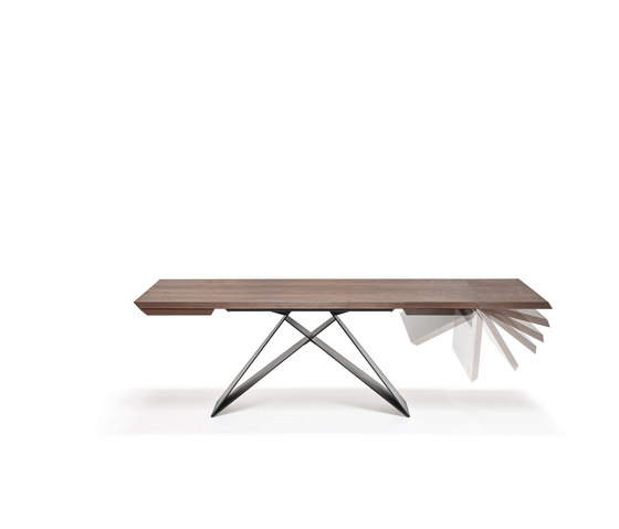 Premier Wood Drive by Cattelan Italia | Dining tables