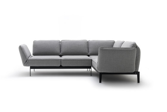Rolf Benz 386 MERA by Rolf Benz | Sofas