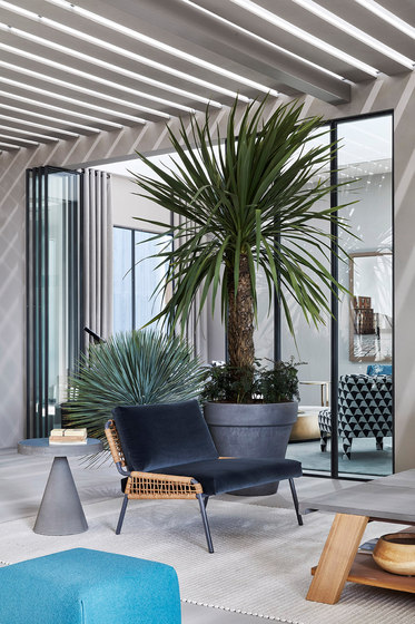 Blend Zoe Armchair by Meridiani | Armchairs