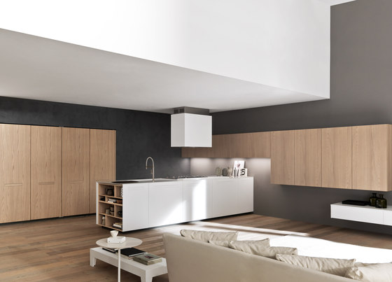 Sintesi.30 peninsula by Comprex | Island kitchens