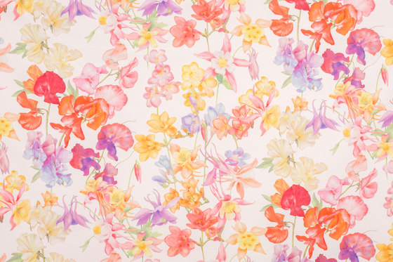 Akelaia   15732 by Dörflinger & Nickow   Drapery fabrics