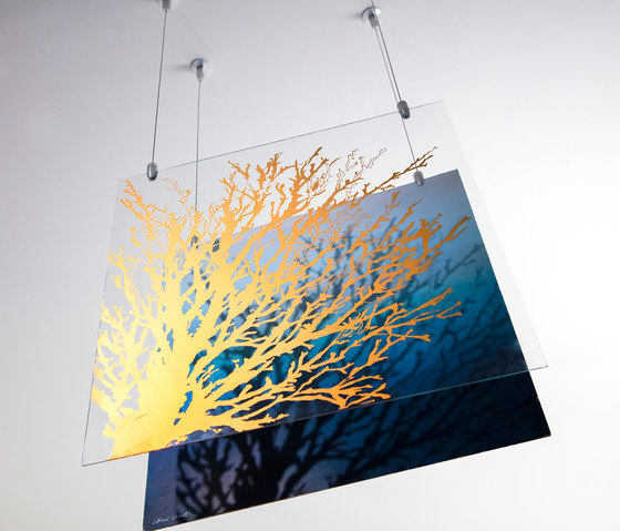 Glass Hanging Art With Gyford Wire by Gyford StandOff Systems® | Picture hanging systems