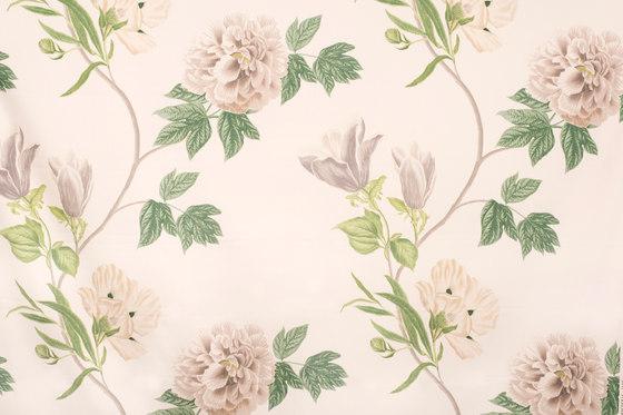 Magnolia | 16405 by Dörflinger & Nickow | Drapery fabrics