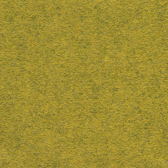 Finett Dimension | 209102 by Findeisen | Carpet tiles