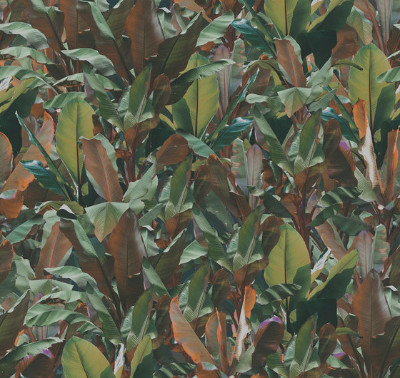 Vito Nesta | Costarica by Devon&Devon | Wall coverings / wallpapers