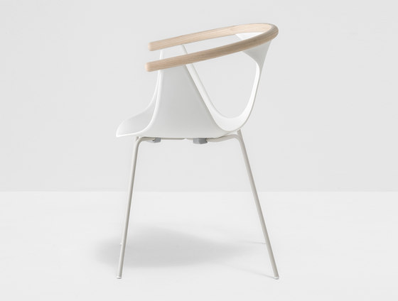 Fox armchair 3726 by PEDRALI | Chairs