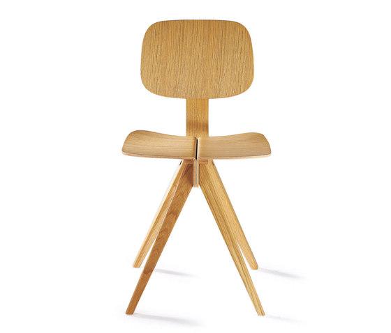 Mosquito Oak by Rex Kralj | Chairs
