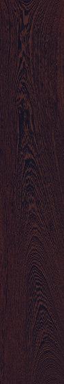Fabula | Fabalis 20x120 von Caesar | Keramik Fliesen