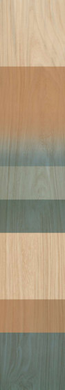 Fabula   Decor Jungle 20x120 di Caesar   Piastrelle ceramica
