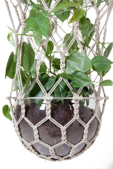 Lucille by llot llov   Plant pots