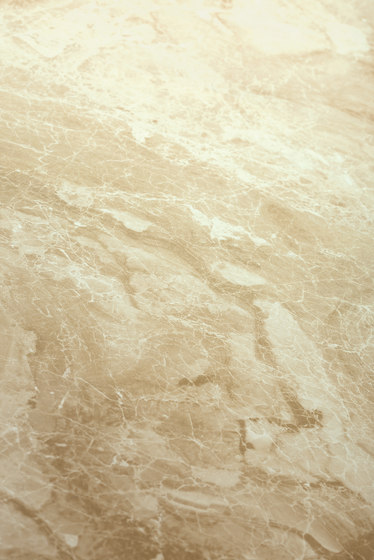 Beige | Onice Cappuccino by Gani Marble Tiles | Natural stone panels