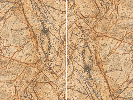 Brown   Rainforest Brown - Antique by Gani Marble Tiles   Natural stone panels