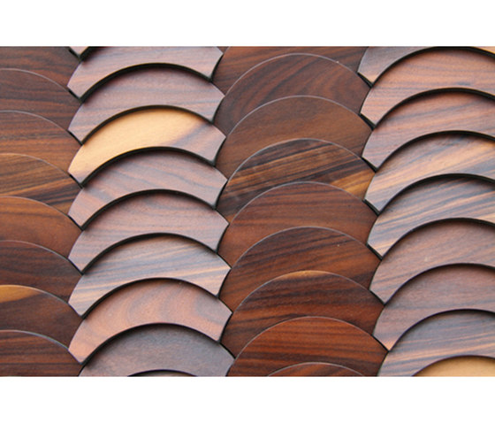 Ironwood Veneer de Architectural Systems | Chapas