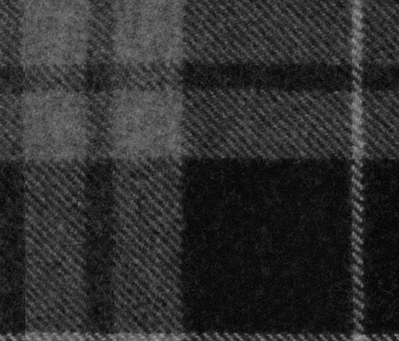 Lumber Jack   Shifty Lad by Anzea Textiles   Upholstery fabrics