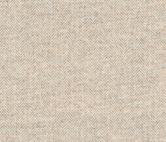 Limerick   Cotton by Anzea Textiles   Upholstery fabrics