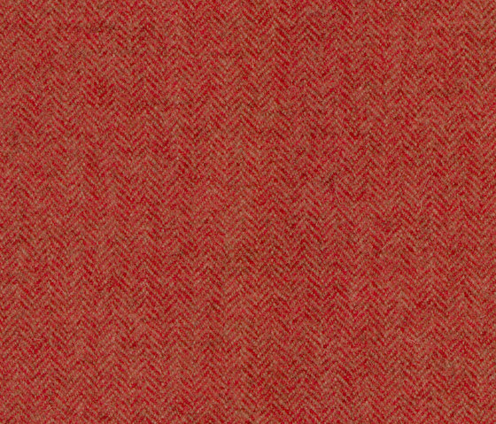 Limerick | Jammers by Anzea Textiles | Upholstery fabrics