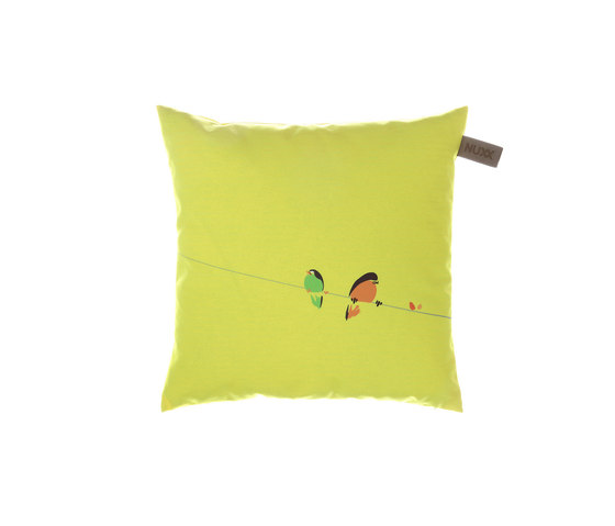 Cushions de Nurus | Cojines