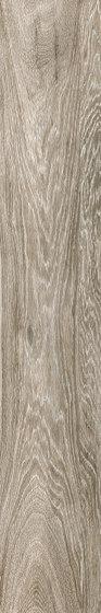 Steam wood | dove grey natural de Cerdisa | Baldosas de cerámica