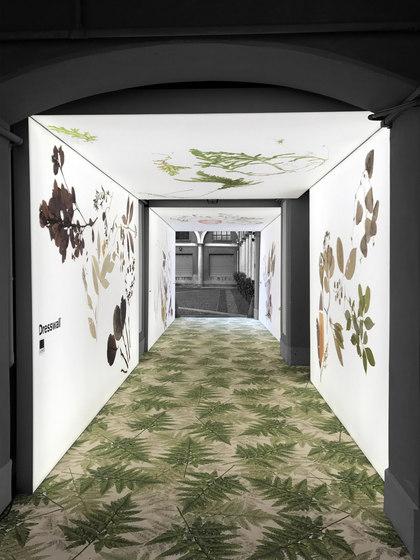 Versátil: elementos iluminados para interiores de Dresswall   Techos luminosos