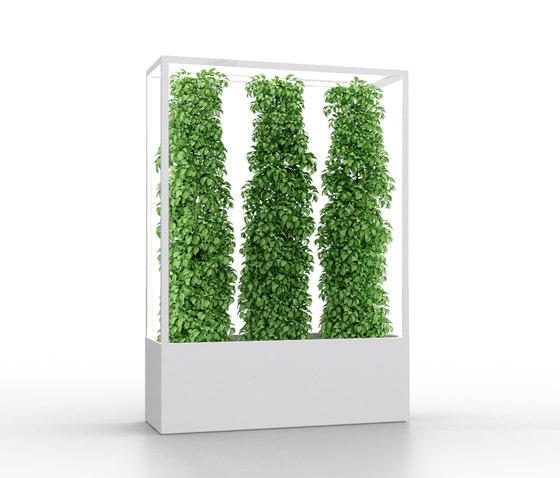 Cube Wall 1600 by lasfera | Screening panels