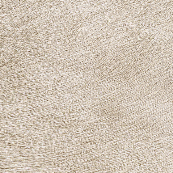 Indomptée | Movida VP 625 40 by Elitis | Wall coverings / wallpapers
