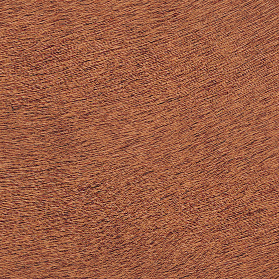 Indomptée | Movida VP 625 42 by Elitis | Wall coverings / wallpapers