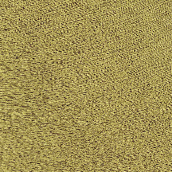 Indomptée | Movida VP 625 45 by Elitis | Wall coverings / wallpapers