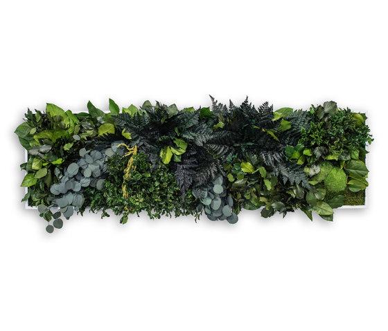 plant picture | jungle 140x40cm de styleGREEN | Murs végétaux