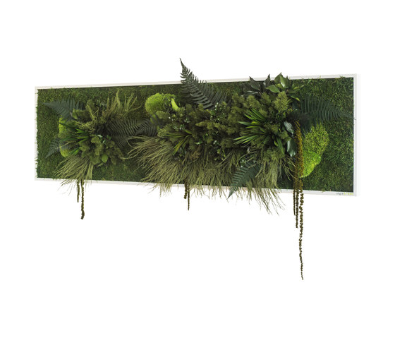 plant picture   Plant islands 140x40cm by styleGREEN   Living / Green walls