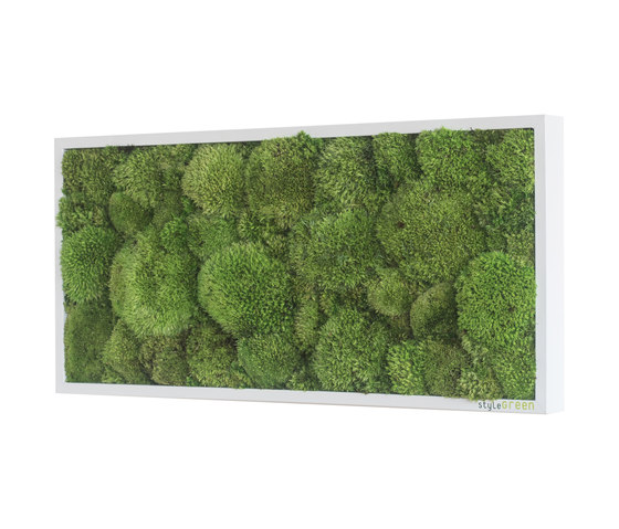 moss picture | pole moss picture 57x27cm by styleGREEN | Living / Green walls