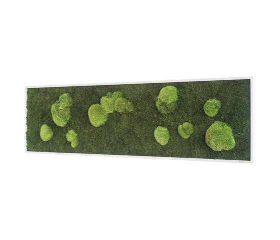 moss picture | pole and forest moss picture 140x40cm by styleGREEN | Living / Green walls