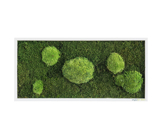 moss picture | pole and forest moss picture 57x27cm by styleGREEN | Living / Green walls