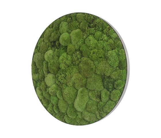 ellipsoid | pole moss 80cm by styleGREEN | Living / Green walls