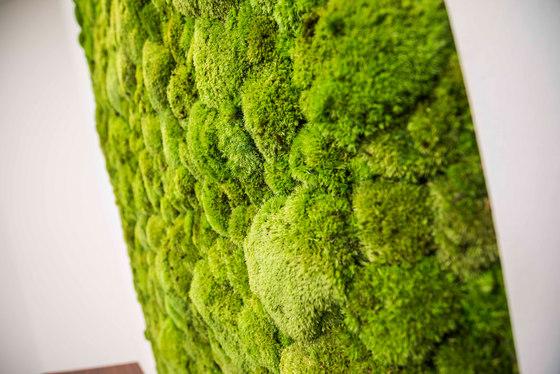 individual | greening pole moss by styleGREEN | Living / Green walls