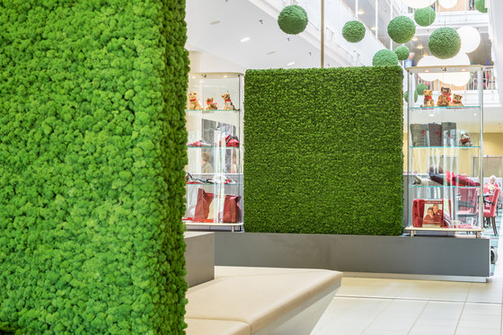 Evergreen Premium Moss by Freund | Space dividers