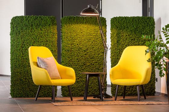 Evergreen Premium Moss de Freund | Separación de ambientes