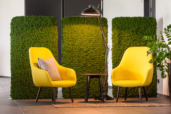 Evergreen Premium Moss de Freund | Paredes móviles