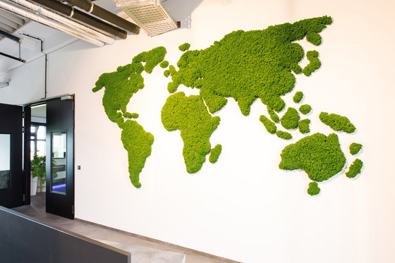 Evergreen Premium individually shaped de Freund | Cuadros de pared fonoabsorbentes