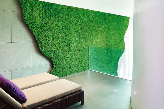 Evergreen Premium individually shaped by Freund | Living / Green walls