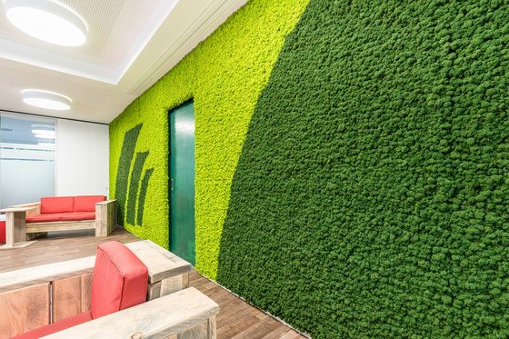 Evergreen Premium Moss color combinations by Freund | Wall panels