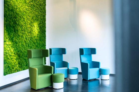 Greenhill Moss walls de Freund   Objetos fonoabsorbentes