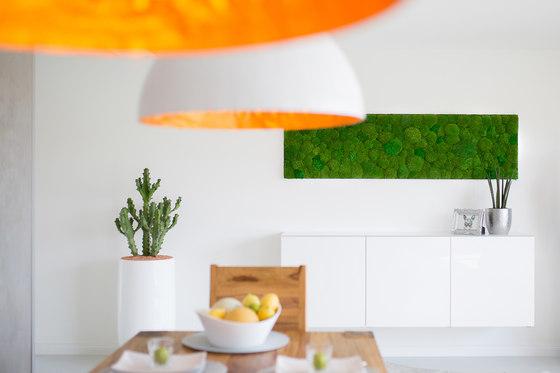 Greenhill Moss walls by Freund   Sound absorbing wall art