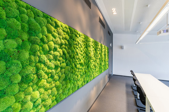 Greenhill Moss walls by Freund | Sound absorbing wall objects